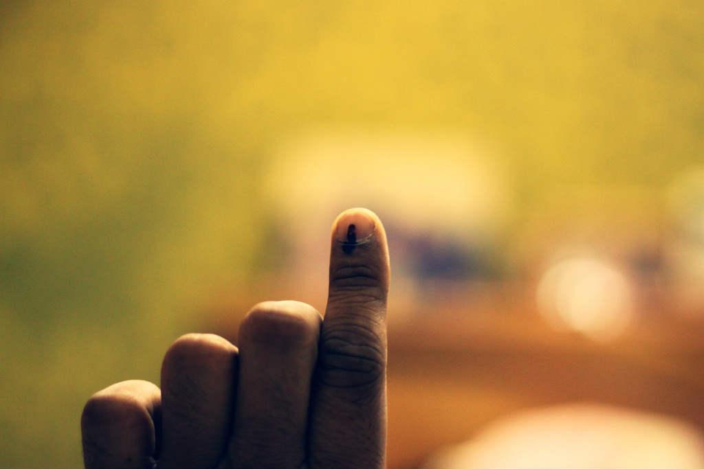 vote 3ff
